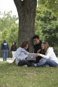 group of college students under tree all looking at laptop